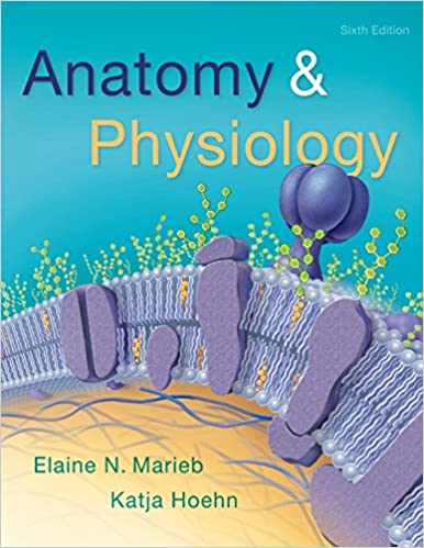 Free download anatomy physiology 6th edition pdf full ebook free download anatomy physiology 6th edition pdf full ebook rtger64rt fandeluxe Epub