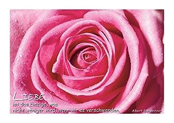 msn sprüche liebe Poetische Postkarte Sprüche; Liebe ist das Einzige, was nicht  msn sprüche liebe