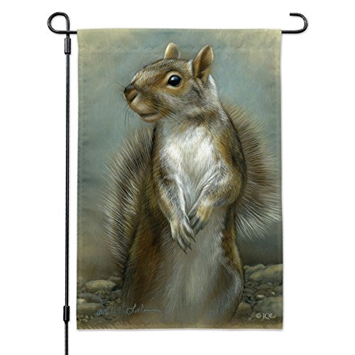 Graphics and More Mischievous Squirrel Garden Yard Flag with Pole Stand Holder Review