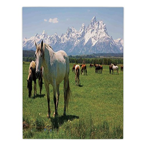 Polyester Rectangular Tablecloth,National Parks Home Decor,Equestrian Decor Snow Idyllic Mountain Peaks Arabian Horse Art Prints,Multi,Dining Room Kitchen Picnic Table Cloth Cover,for Outdoor Indoor by iPrint
