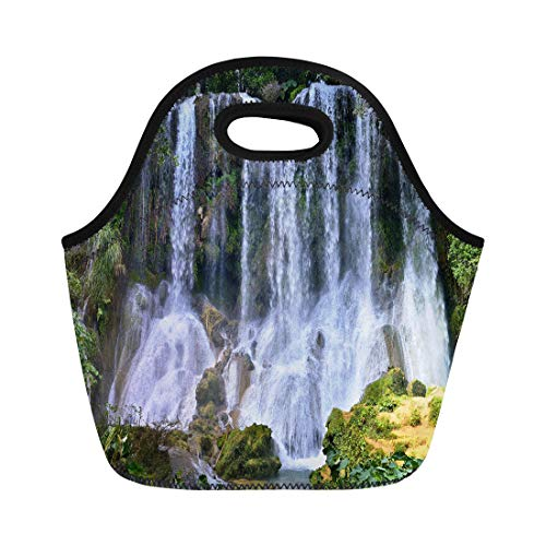Semtomn Lunch Tote Bag Waterfall in Lush Rainforest Beautiful Cascades El Nicho Scambray Reusable Neoprene Insulated Thermal Outdoor Picnic Lunchbox for Men Women