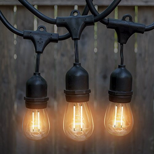 Outdoor String Lights Heavy Duty: LED Outdoor & Indoor Edison Style String Lights