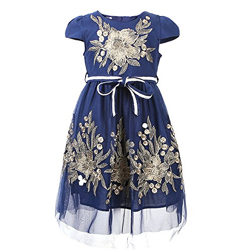 CHNDKNY 2017 Summer Children Floral Embroidery Girls Dresses Kids Princess Wedding Party Dress (8T, BIUE)