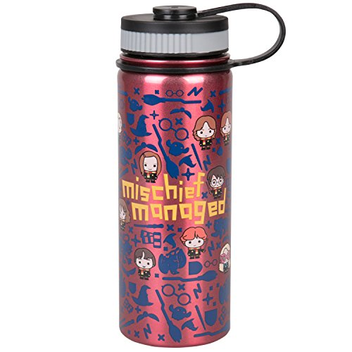 Harry Potter Stainless Steel Water Bottle - With Fun Mischief Managed Character Design - 550ml by Underground Toys