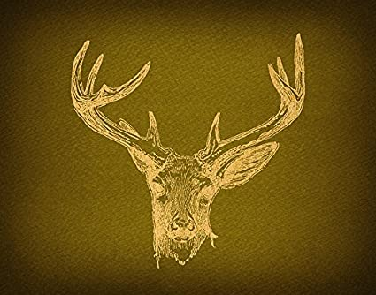 Vintage Deer Wall Art Print For Home Decoration Outdoors Nature Themed Antique Or Poster