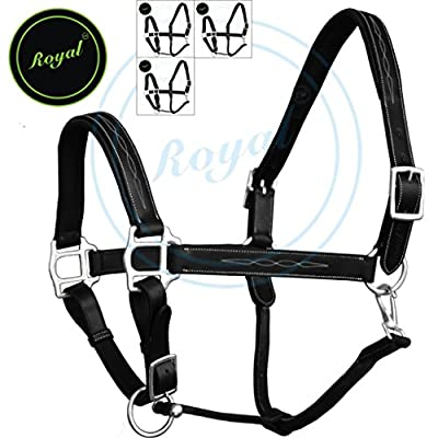 Royal Six Fancy Padded Halter./ Vegetable Tanned Leather./ Brass Nickel Buckles./ Economic Pack of 4 Halters.