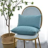 Kevin Textile Pack of 2, Deluxe Home Decorative Super Soft Lumbar Throw Pillow Cover Cushion Case (12 x 20 Inch, Niagara Blue)