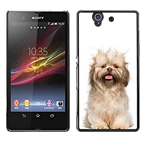 VORTEX ACCESSORY Hard Protective Case Skin Cover - Norfolk terrier puppy glen of imaal dog - Sony Xperia Z L36H C6602 C6603 C6606 C6616