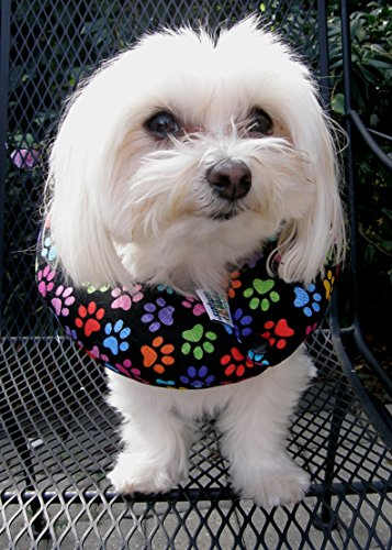 Puppy Bumpers Keep Your Dog on the Safe Side of the Fence – Rainbow Paw (up to 10″)