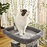 PAWZ Road Cat Tree Luxury Cat Tower with Double Condos, Spacious Perch, Fully Wrapped Scratching Sisal Posts and Replaceable Dangling Balls 13