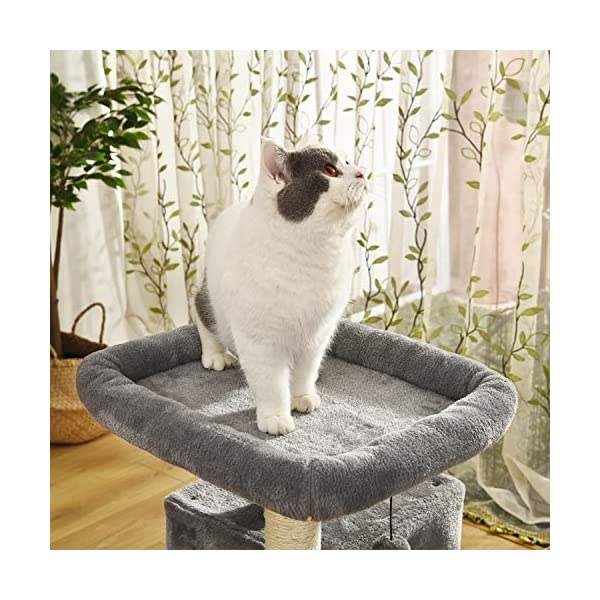 PAWZ Road Cat Tree Luxury Cat Tower with Double Condos, Spacious Perch, Fully Wrapped Scratching Sisal Posts and Replaceable Dangling Balls 6