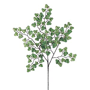 "19.25"" Maidenhair Fern Spray x3 w/100 Leaves Green (Pack of 12) 23"