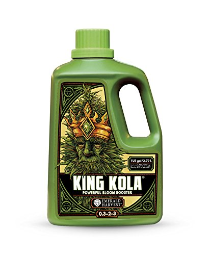 King Kola (1 Gallon)