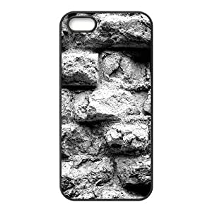 Wall Brick Series, IPhone 5,5S Cases, Old Brick Wall Black and White Cases for IPhone 5,5S [Black]