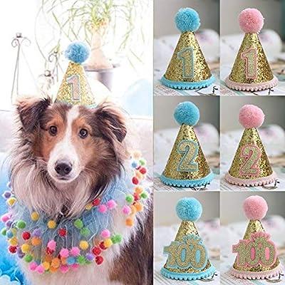 Sombrero de cumpleaños para mascota, gorro de primer ...
