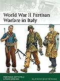 World War II Partisan Warfare in Italy (Elite)