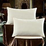 Sleep Restoration Gel Pillows- (2 Pieces) Best Hotel Quality Comfortable & Polyester Cooling Gel Fiber Filled Pillow - Dust Mite Resistant (mi se)