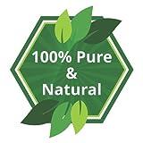 Neem (Azadirachta indica) Pure Natural Oil