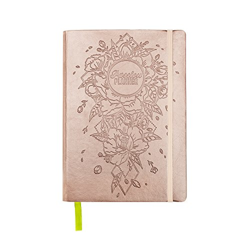 Pink Ribbon Daily Planner - Academic Passion Planner Pro Aug 2018 - Jul 2019 - Goal Oriented Daily Agenda, Appointment Calendar, Reflection Journal - (B5) Monday Start (Radiant Rose Gold)