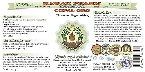 Copal Oro Alcohol-FREE Liquid Extract, Copal Oro (Bursera Fagaroides) Dried Pieces Glycerite Hawaii Pharm Natural Herbal Supplement 2 oz