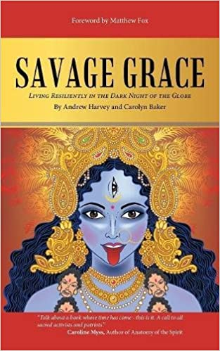The Savage Grace Book