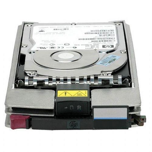 HP AP731B StorageWorks EVA M6412A 450GB 10K Fibre Channel Hard Disk Drive (Renewed)