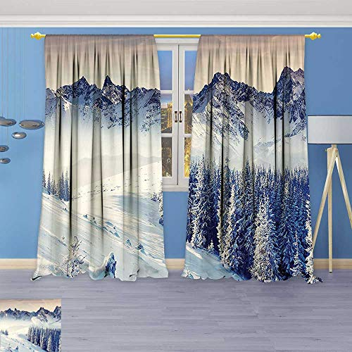 Winter Room Roll Wonderland (Philiphome 2 Panel Set Digital Printed Window Curtains Snowy Winter Dramatic Overcast Sky Wonderland Snowfall Seasonal Panorama for Bedroom Living Room Dining Room)