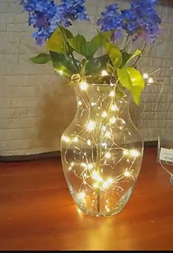 (Pack of 10) 6.5ft 20 Leds Led Copper Fairy String Wire B...