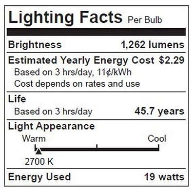 TCP LED19E26P3827KFL LED Light Bulb 19-watt PAR38 Floodlight, 2700-Kelvin