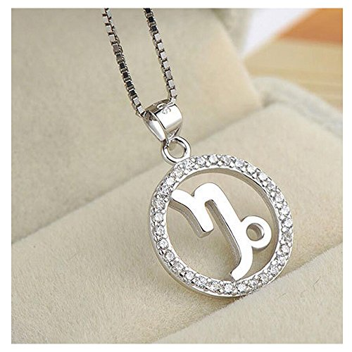 Yuriao Jewelry Elegant Fashion Love Diamond Accented Twelve Constellation Capricornus Pendant Necklace£¨Capricornus£