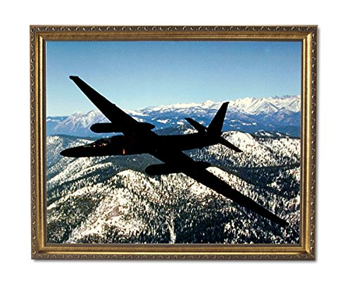 USAF U2 Spy Plane Jet Airplane Wall Picture Gold Framed Art - Spy Plane U2 Pictures