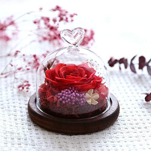 JYJSYMMG 永遠の生活 ガラスカバー プリザーブドフラワー 11.59cm ローズウェディング 記念日 バレンタインデー 母の友人 ギフトに最適 9648257176256 B07H5JYJT9 09 Red