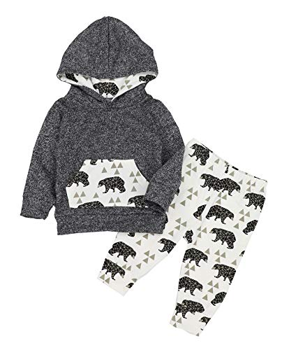 Toddler Infant Baby Boys Clothes Bear Long Sleeve Hoodie Tops Sweatsuit Pants Outfits Set 0-6 Months Gray