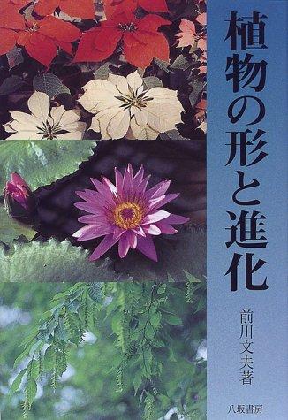 植物の形と進化