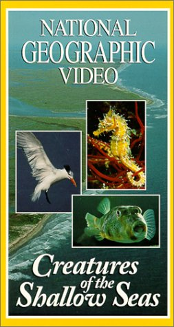 National Geographic: Creatures of the Shallow Seas [VHS]