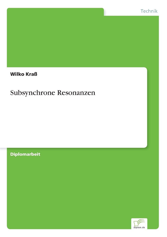Subsynchrone Resonanzen: Amazon.de: Wilko Kraß: Bücher