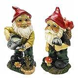 Cheap Garden Gnome Statue – Gulliver & Mushroomie the Garden Gnome Set – Lawn Gnome