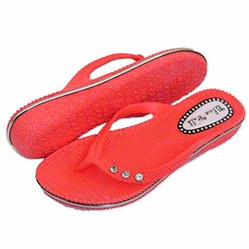 Damen Flach Pink Zehensteg Sandale Flip Flop Strandurlaub Tanga Sommer Schuhe Größen 3-8