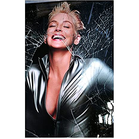 Sharon Stone 8 Inch X 10 Inch Photograph Catwoman 2004
