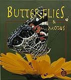Butterflies and Moths, Bobbie Kalman and Tammy Everts, 0865057141