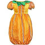 YiZYiF Baby Girls Boutique Pumpkin Fairy Dress Halloween Christmas Fancy Costume
