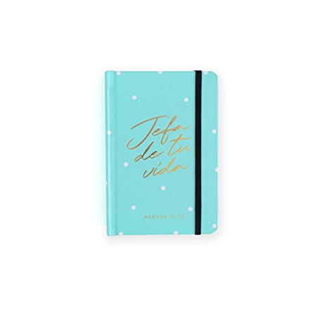 Amazon.com : 19-20 Daily Diary Head Mint. Mini : Office Products
