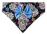 2 in 1 Blue Bow and Bandanna Sugar Skull Day of the Dead Calavera Cinco de Mayo Print, Over the Collar Slip Thru Thread Through Style Neckwear Petwear