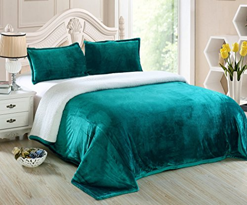 Chezmoi Collection Micromink Sherpa Reversible Throw Blanket (Twin, Teal)