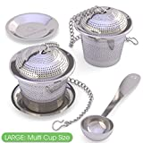 Apace Loose Leaf Tea Infuser (Set of 2) with Tea Scoop and Drip Tray - Ultra Fine Stainless Steel Strainer & Steeper for a Superior Brewing Experience … (Large, Silver)