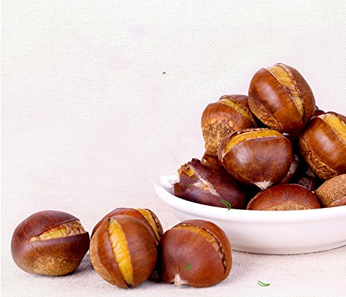 Healthy Snacks Roasted Chestnut Sweet and Delicious 8.4oz