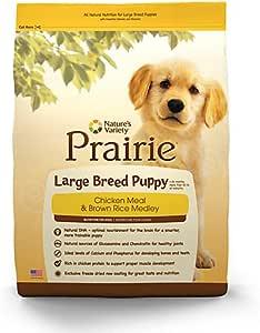 what is a prairie dogs diet
