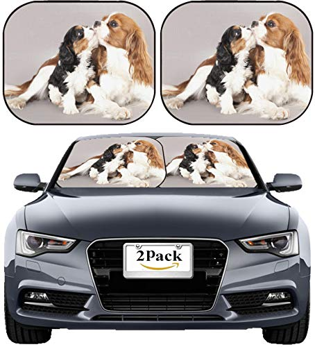 MSD Car Sun Shade Windshield Sunshade Universal Fit 2 Pack, Block Sun Glare, UV and Heat, Protect Car Interior, Image ID: 12195265 Litter of Cavalier King Charles Spaniel Monter and Puppy