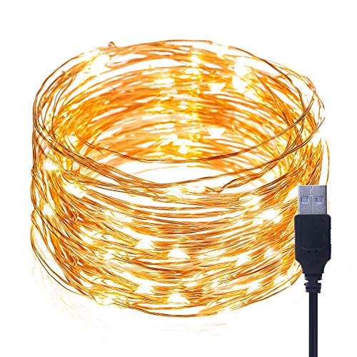 BrightTouch Mini LED String Lights  Powered by USB Best Christmas Decorations 100 Micro Lights 33ft/10m Warm White