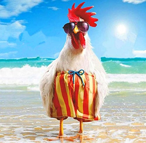 Crow's Soul 5D DIY diamond paintings diamond cross -embroidered diamond Rooster chick beach sea swimming cool
